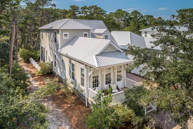 59 Hiker Street, Santa Rosa Beach, FL 32459 (MLS #833036) :: Scenic Sotheby's International Realty