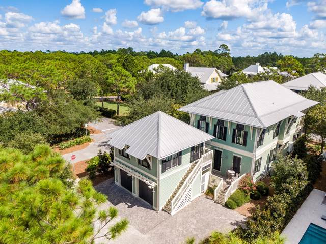 72 Needlerush Drive, Santa Rosa Beach, FL 32459 (MLS #833430) :: Luxury Properties on 30A