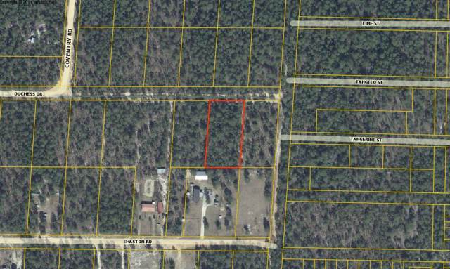 Lot 13 Duchess Drive, Mossy Head, FL 32434 (MLS #833470) :: CENTURY 21 Coast Properties