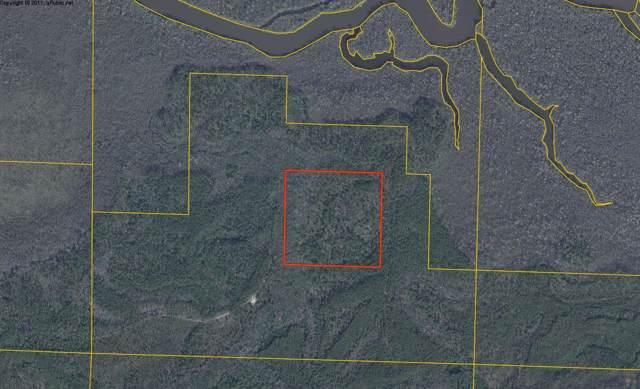 40 ACRES Bunker Creek Area, Vernon, FL 32462 (MLS #833608) :: Hilary & Reverie