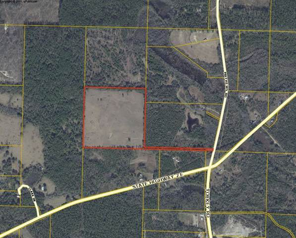41.5 Acres Mathews Road, Defuniak Springs, FL 32435 (MLS #833697) :: Berkshire Hathaway HomeServices Beach Properties of Florida