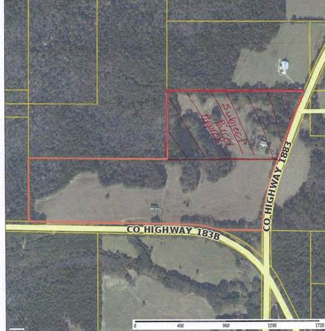 5303 Co Hwy 1883, Defuniak Springs, FL 32433 (MLS #833791) :: Counts Real Estate on 30A