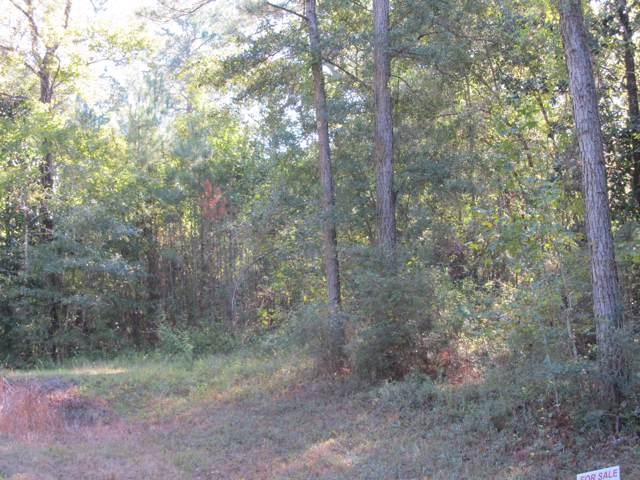 4895 Bob Sikes Road, Defuniak Springs, FL 32435 (MLS #834496) :: Linda Miller Real Estate