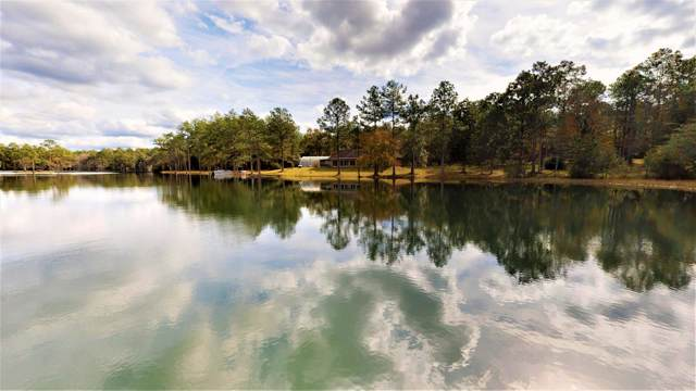 750 Lake Wilson Drive, Defuniak Springs, FL 32435 (MLS #835894) :: Luxury Properties on 30A