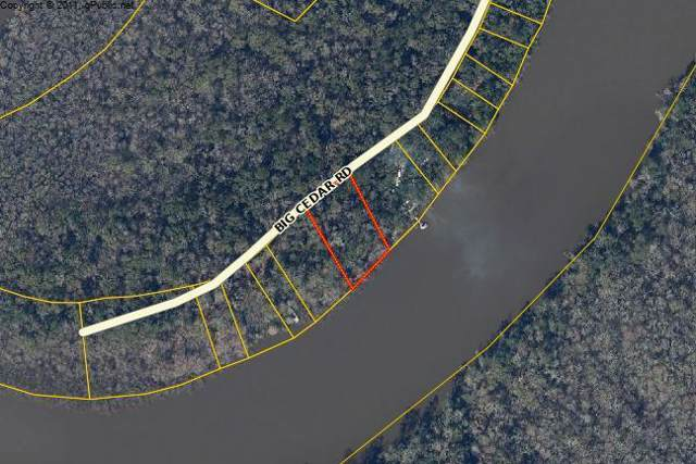 TBD Big Cedar Road, Ponce De Leon, FL 32455 (MLS #836111) :: Homes on 30a, LLC