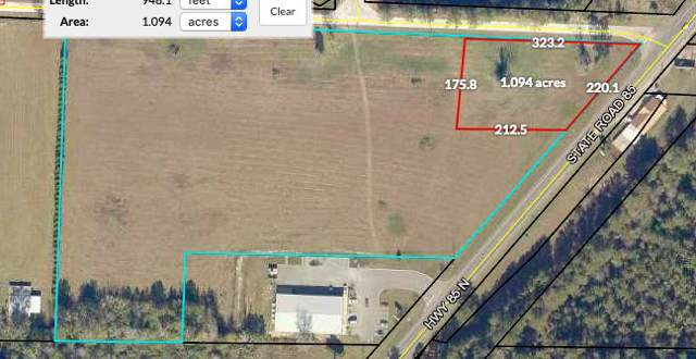 8080 Highway 85, Laurel Hill, FL 32567 (MLS #836513) :: 30A Escapes Realty