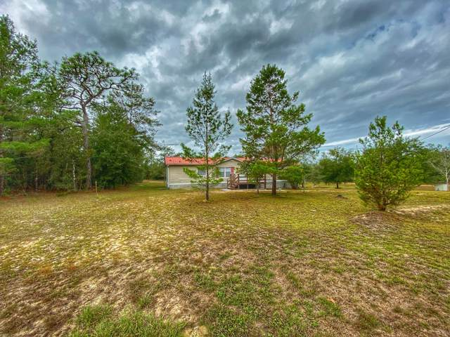 576 Blue Ridge Boulevard, Defuniak Springs, FL 32433 (MLS #836540) :: CENTURY 21 Coast Properties