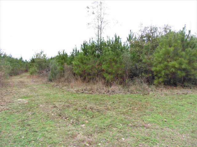 39 acres W Co Hwy 147. Walk, Laurel Hill, FL 32567 (MLS #838405) :: Classic Luxury Real Estate, LLC