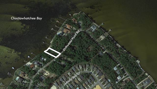 102' Bay Driftwood Point Road, Santa Rosa Beach, FL 32459 (MLS #838568) :: Berkshire Hathaway HomeServices Beach Properties of Florida