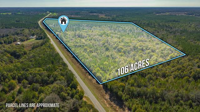 7007 Hwy 55, Florala, AL 36442 (MLS #838629) :: 30A Escapes Realty