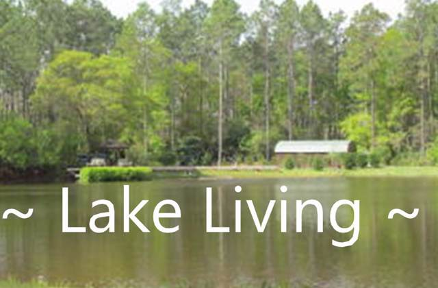 20 Acres Fox Hill Road, Defuniak Springs, FL 32433 (MLS #838919) :: Coastal Lifestyle Realty Group