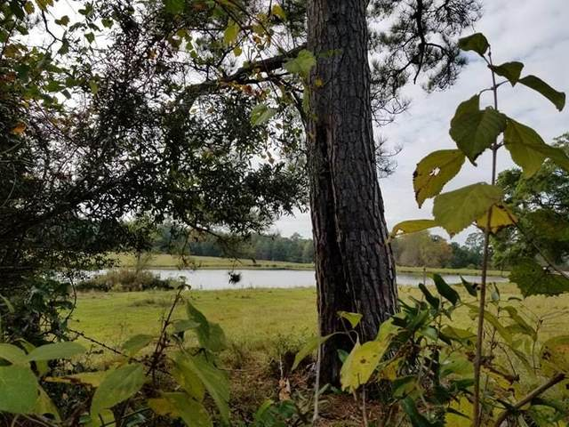 1133 Hub Presley Road, Laurel Hill, FL 32567 (MLS #839722) :: Counts Real Estate Group