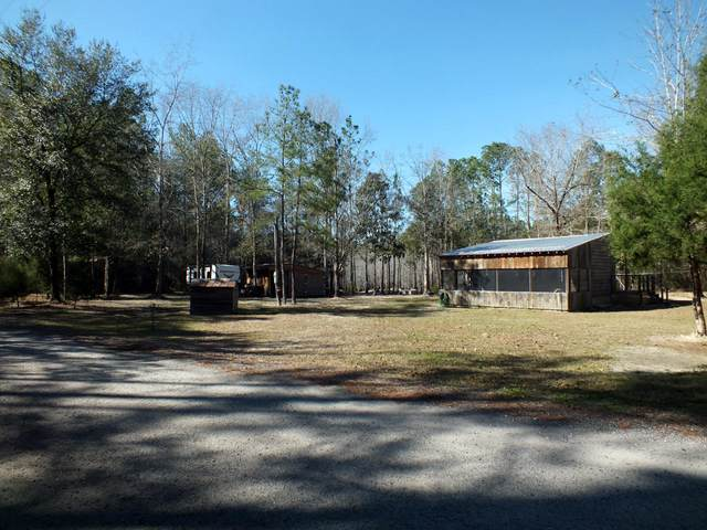 30 Clyde Brown Road, Ponce De Leon, FL 32455 (MLS #839773) :: RE/MAX By The Sea