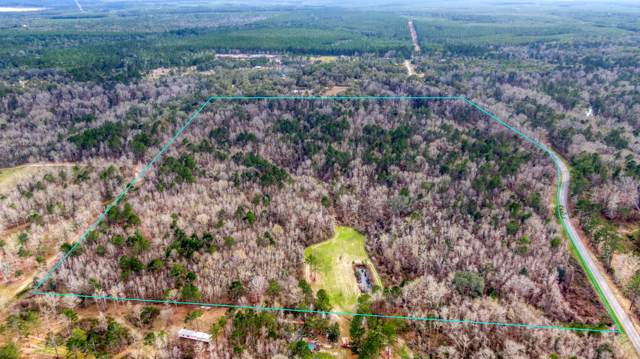 TBD Fanning Branch Road, Vernon, FL 32462 (MLS #839835) :: Somers & Company