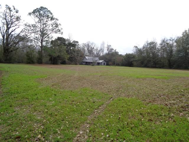 23834 Stateline, Paxton, FL 32538 (MLS #840129) :: Luxury Properties on 30A
