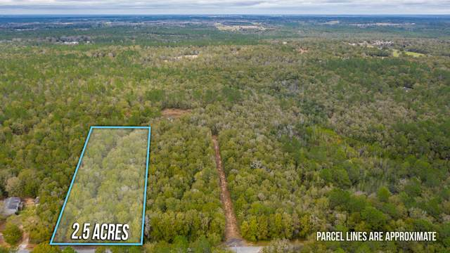 Lot 13 Country Living Road, Baker, FL 32531 (MLS #840355) :: Scenic Sotheby's International Realty