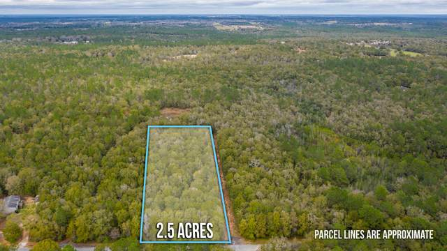 Lot 14 Country Living Road, Baker, FL 32531 (MLS #840356) :: Scenic Sotheby's International Realty