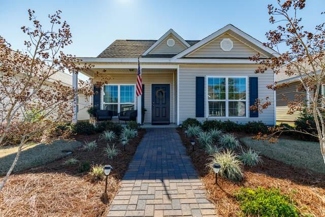 321 Fanny Ann Way, Freeport, FL 32439 (MLS #840520) :: Classic Luxury Real Estate, LLC
