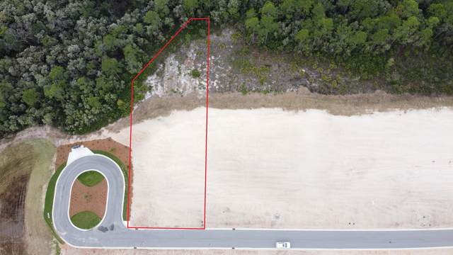 Lot 14 Needle Cast Lane, Watersound, FL 32461 (MLS #841368) :: Somers & Company