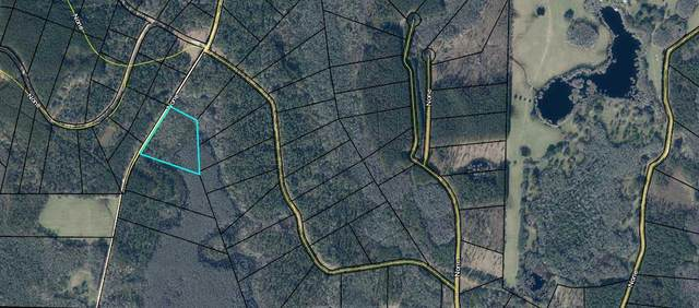 TBD Red Road Lot 120, Westville, FL 32464 (MLS #841459) :: The Beach Group