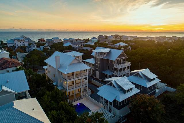 224 Walton Rose Lane, Inlet Beach, FL 32461 (MLS #842067) :: Scenic Sotheby's International Realty