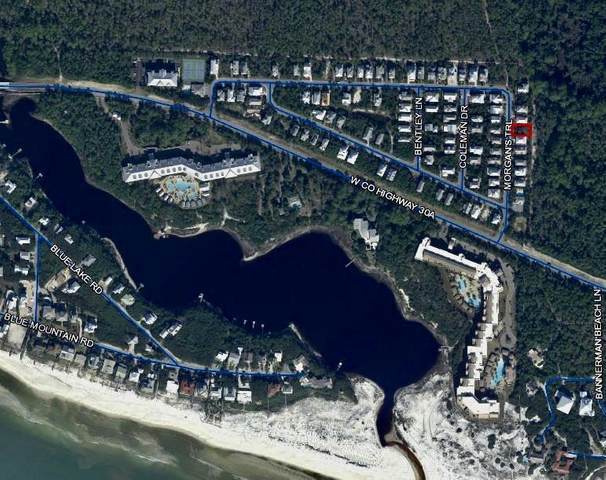 lot 6 Morgans Trail Trail, Santa Rosa Beach, FL 32459 (MLS #842199) :: Linda Miller Real Estate