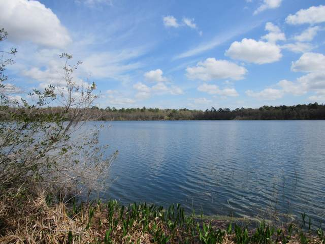2 Lots Blue Pond Circle, Ponce De Leon, FL 32455 (MLS #843462) :: 30a Beach Homes For Sale