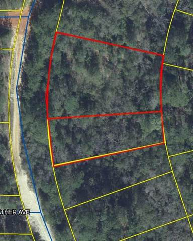 Lots 20-22 Clearwater Drive, Defuniak Springs, FL 32433 (MLS #843506) :: Luxury Properties on 30A