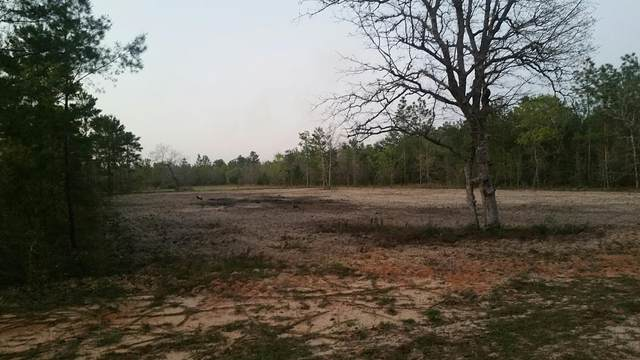 1 acre Williams Road, Defuniak Springs, FL 32433 (MLS #843669) :: Linda Miller Real Estate