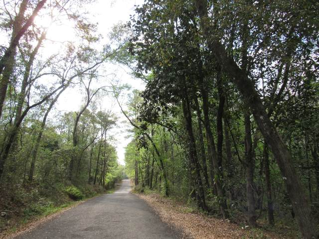 47 +/- AC Chesser Road, Defuniak Springs, FL 32435 (MLS #843887) :: RE/MAX By The Sea