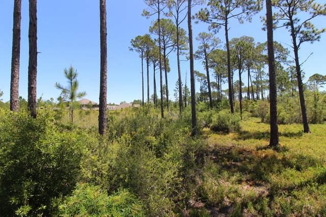 000 Alderberry Road, Santa Rosa Beach, FL 32459 (MLS #845294) :: Keller Williams Realty Emerald Coast