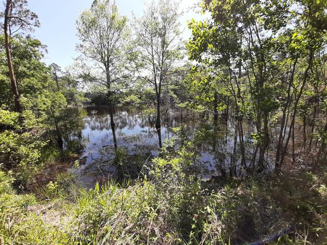 TBD Pinewood Drive, Defuniak Springs, FL 32433 (MLS #845509) :: The Honest Group