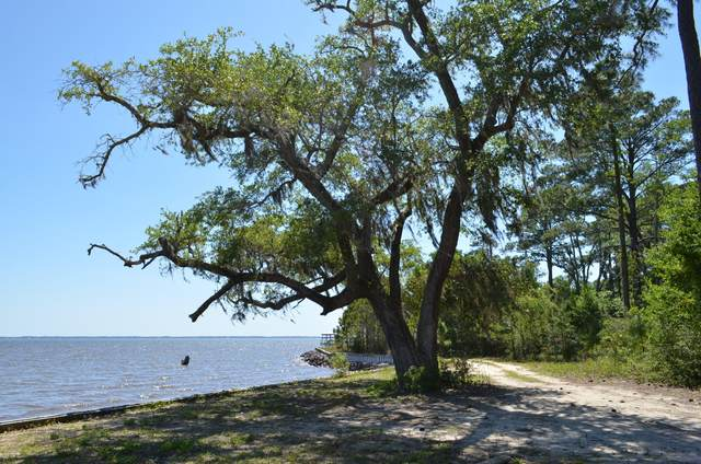 xxx W Co Highway 83-A, Freeport, FL 32439 (MLS #845775) :: Engel & Voelkers - 30A Beaches