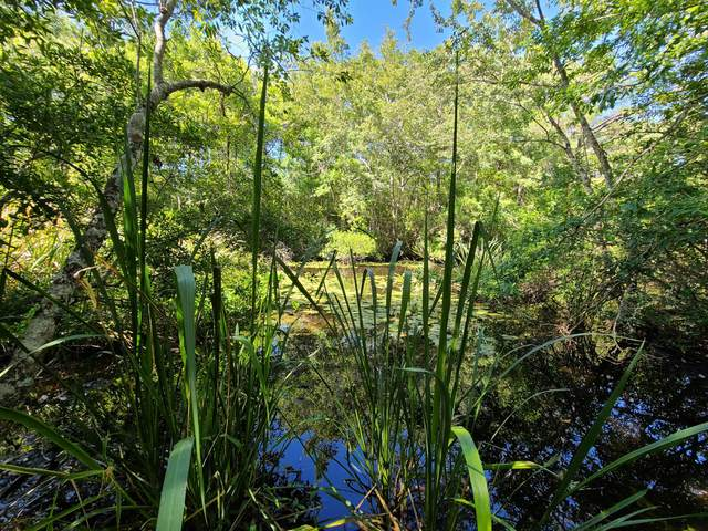 LOT 14 Alaqua Cove Road, Freeport, FL 32439 (MLS #845838) :: ResortQuest Real Estate