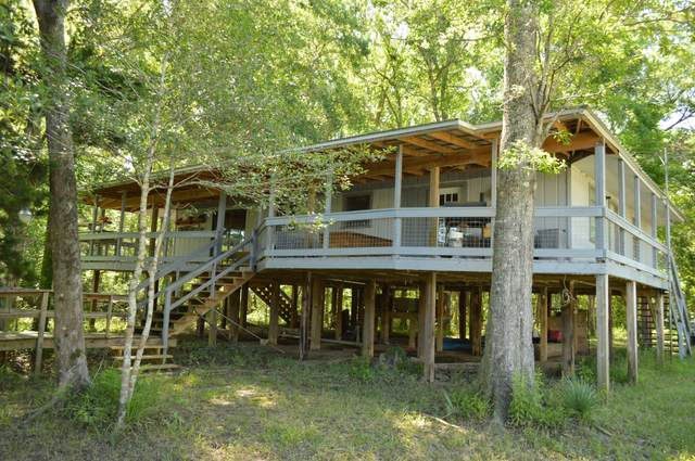 2191 River Road, Ponce De Leon, FL 32455 (MLS #846342) :: Counts Real Estate Group