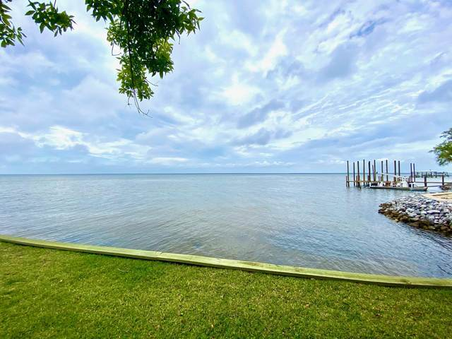 1.20 Acres Driftwood Point Road, Santa Rosa Beach, FL 32459 (MLS #846588) :: Classic Luxury Real Estate, LLC