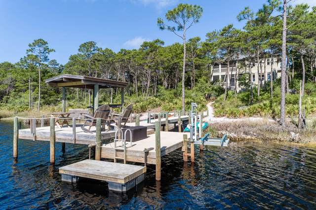 100 Chance Lane, Inlet Beach, FL 32461 (MLS #846922) :: Berkshire Hathaway HomeServices Beach Properties of Florida