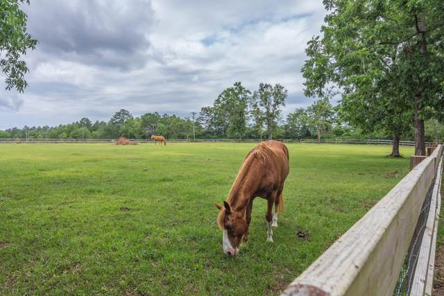 5780 Griffith Mill Road, Baker, FL 32531 (MLS #846924) :: Scenic Sotheby's International Realty
