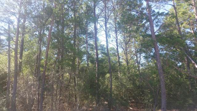 Lot 24 Us-90, Defuniak Springs, FL 32433 (MLS #847640) :: Better Homes & Gardens Real Estate Emerald Coast
