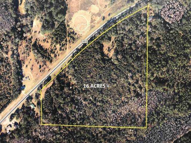 16AC E Co Highway 181C, Defuniak Springs, FL 32435 (MLS #847665) :: 30A Escapes Realty