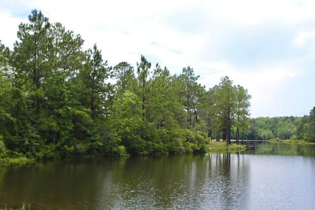 1.4AC Shoreline Circle S, Defuniak Springs, FL 32433 (MLS #847846) :: Counts Real Estate Group