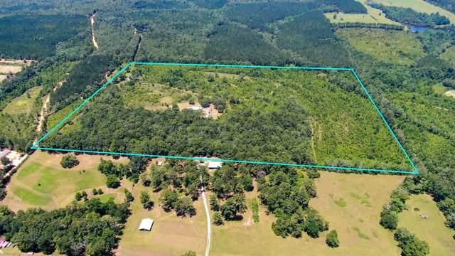 1445 Stanley Loop, Ponce De Leon, FL 32455 (MLS #848618) :: ResortQuest Real Estate