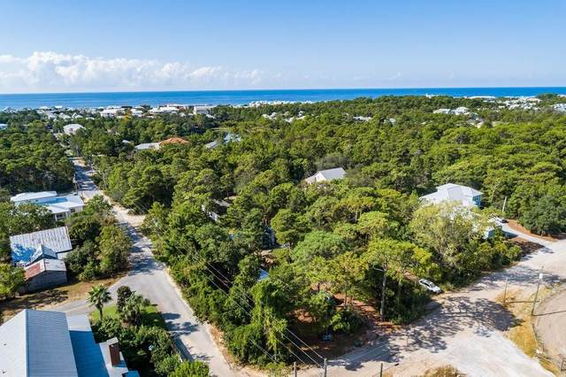 356 & 387 Satinwood Drive, Santa Rosa Beach, FL 32459 (MLS #849288) :: Linda Miller Real Estate