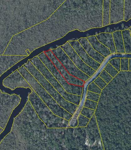 Lot 6 S J Hunter Way, Freeport, FL 32439 (MLS #849531) :: Briar Patch Realty