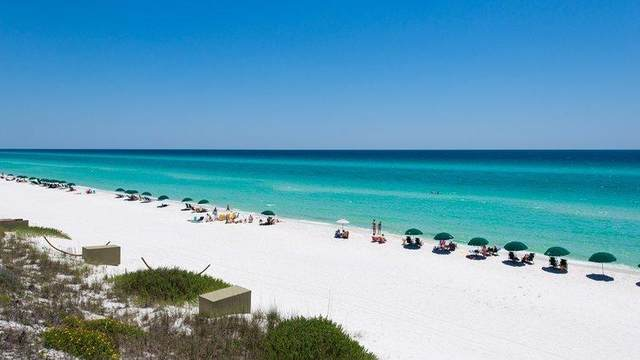 791 N County Hwy 393, Santa Rosa Beach, FL 32459 (MLS #849814) :: Keller Williams Realty Emerald Coast