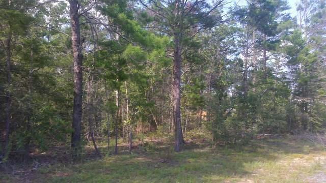 Lot 20 Lafavre Lane, Defuniak Springs, FL 32433 (MLS #850286) :: Scenic Sotheby's International Realty