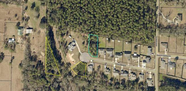 Lot 8 Long Needle Court, Baker, FL 32531 (MLS #850317) :: ENGEL & VÖLKERS