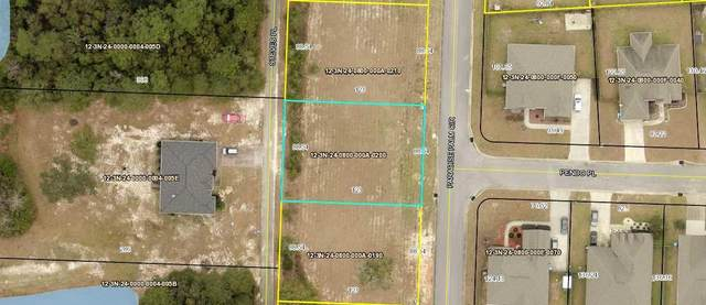 LOT 20 Paradise Palm Circle, Crestview, FL 32536 (MLS #852269) :: EXIT Sands Realty