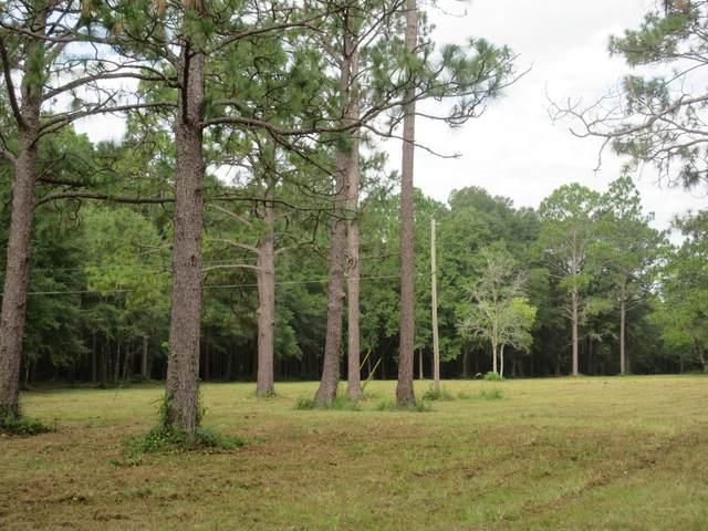 169 Ms Marsha Lane, Defuniak Springs, FL 32433 (MLS #852332) :: Briar Patch Realty
