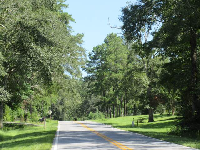 10AC State Road 183-A, Ponce De Leon, FL 32455 (MLS #852346) :: Coastal Luxury